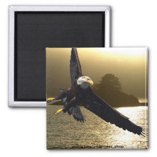 Regalos de motivación calvos de Eagle Imán Cuadrado