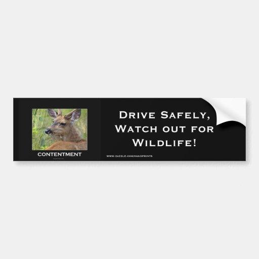 Regalos de motivación de los ciervos pegatina de parachoque