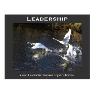 Regalos de motivación de los cisnes de trompetista postal