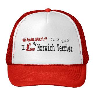 Regalos de Norwich Terrier Gorra