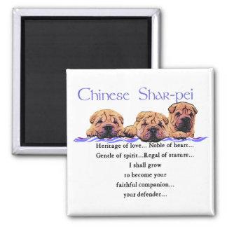 Regalos de Shar-pei del chino Imán Cuadrado