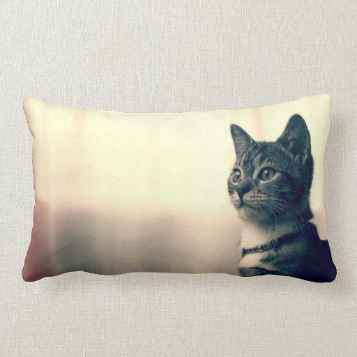 Regalos del amante del gato, regalos temáticos del cojín