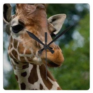 Regalos del arte de los amantes de la jirafa relojes de pared
