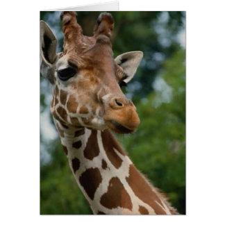 Regalos del arte de los amantes de la jirafa tarjeta de felicitación