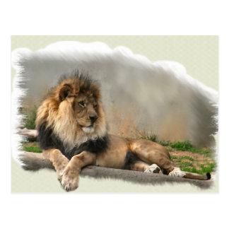 Regalos del arte de los amantes del león postales