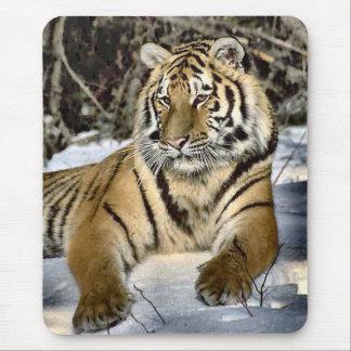 Regalos del arte de los amantes del tigre alfombrilla de ratón