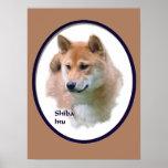 Regalos del arte de Shiba Inu Poster