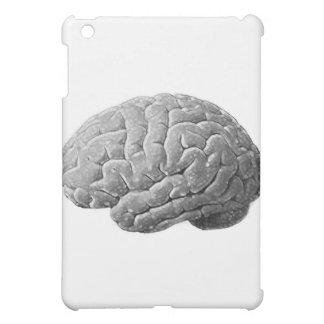 Regalos del cerebro