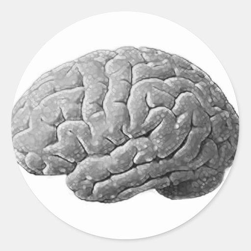 Regalos del cerebro pegatina redonda