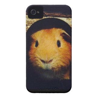 Regalos del conejillo de Indias del jengibre iPhone 4 Fundas