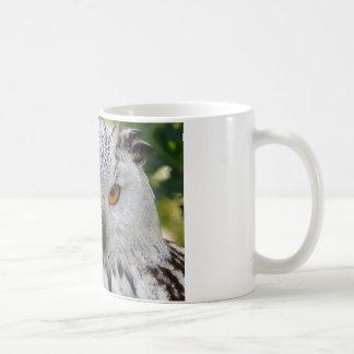 Regalos del destino de las plumas de pájaro del taza de café