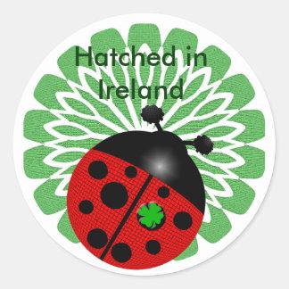Regalos del día de St Patrick del irlandés Pegatinas Redondas