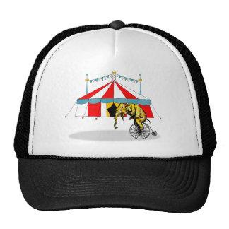 Regalos del elefante del circo gorro