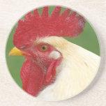 Regalos del gallo del país del peine del gallo roj posavaso para bebida