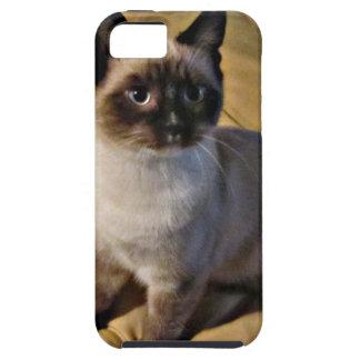 Regalos del gatito de la raqueta iPhone 5 funda