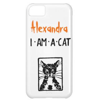 Regalos del gato negro funda para iPhone 5C