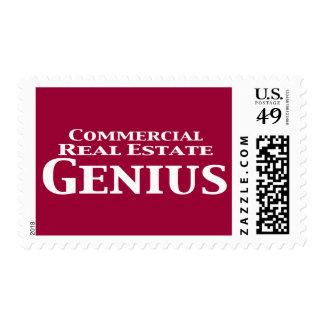 Regalos del genio de la propiedad inmobiliaria envio