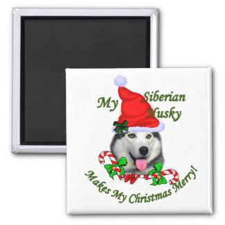 Regalos del navidad del husky siberiano imán cuadrado