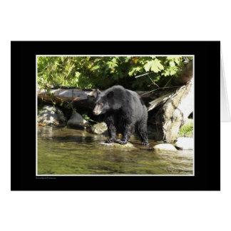 """Regalos del oso negro de la """"localización de color tarjeta de felicitación"""