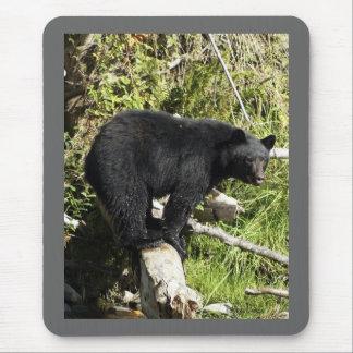 """Regalos del oso negro del """"ejercicio de alfombrilla de ratón"""