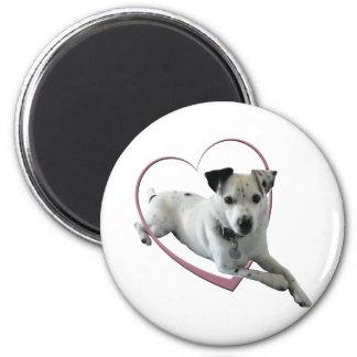 Regalos del perro de Jack Russell del amor Iman Para Frigorífico