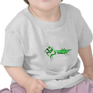 regalos del predicador del verde de Valxart com qu Camiseta