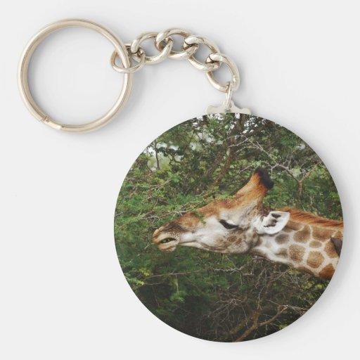 Regalos del safari de la jirafa llaveros personalizados
