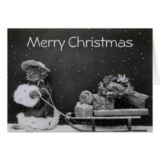 Regalos del transporte del gato del navidad tarjeta de felicitación