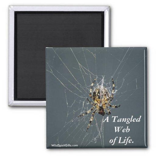 """'Regalos del Web de araña"""" Iman"""
