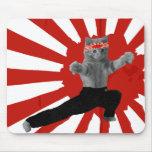 Regalos divertidos del gatito del karate mouse pad