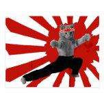 Regalos divertidos del gatito del karate tarjeta postal