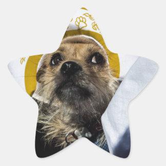 Regalos divertidos del traje del perro pegatina en forma de estrella