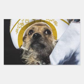 Regalos divertidos del traje del perro pegatina rectangular