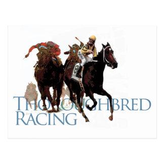 Regalos excelentes de la carrera de caballos tarjeta postal