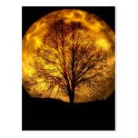 Regalos fantasmagóricos del destino del otoño del