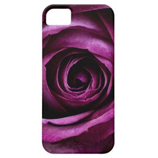 Regalos femeninos de los pétalos color de rosa iPhone 5 fundas