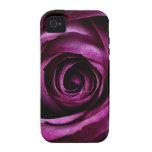 Regalos femeninos de los pétalos color de rosa púr vibe iPhone 4 carcasa