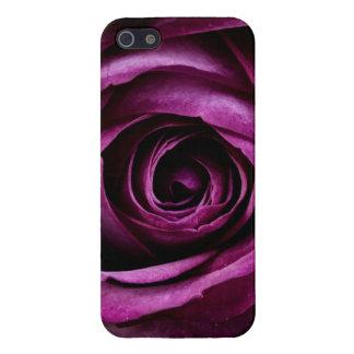 Regalos femeninos de los pétalos color de rosa púr iPhone 5 funda