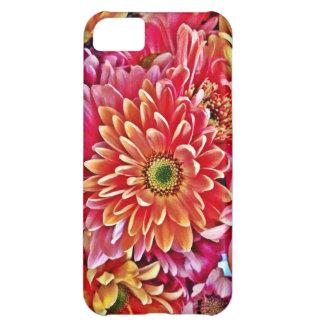 Regalos florales del pétalo anaranjado rosado herm