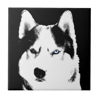 Regalos fornidos del perro del lobo del Malamute Azulejo Cuadrado Pequeño
