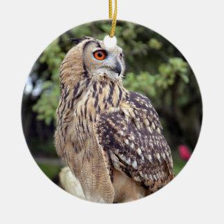 Regalos hermosos de la foto de la fauna del búho adorno navideño redondo de cerámica