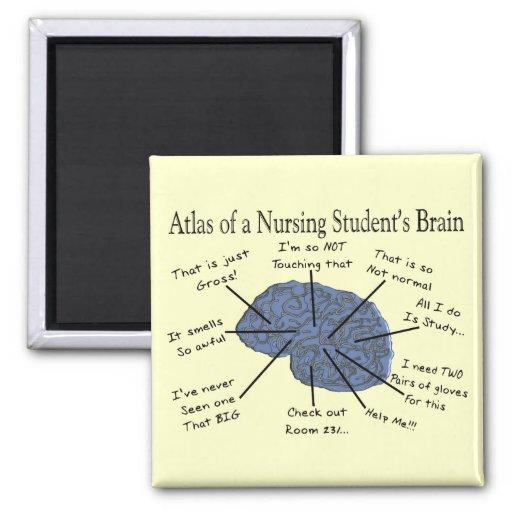 """Regalos hilarantes del """"cerebro"""" del estudiante de imán cuadrado"""