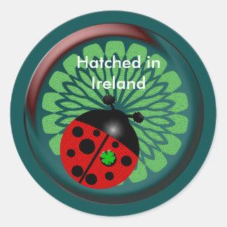 Regalos irlandeses pegatinas redondas