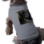 Regalos Mono-peineta Camisas De Mascota