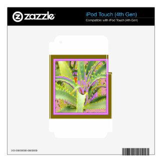 Regalos Púrpura-Rosado-Verdes del agavo de la MOD iPod Touch 4G Calcomanías