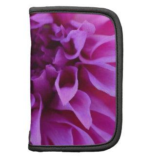 Regalos púrpuras bonitos de la flor de las flores organizador