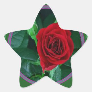 Regalos sensuales florales de la imagen 100 de la pegatina en forma de estrella