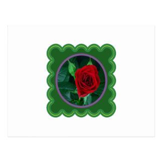 Regalos sensuales florales de la imagen 100 de la postal