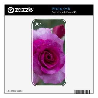 Regalos subiós lavanda iPhone 4S skin