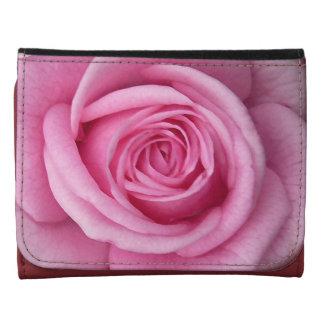 Regalos subiós rosa color de rosa de las carteras